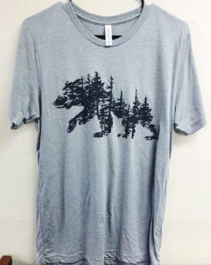 Bear of Redwood Trees